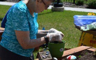 SilverCreek Gardening